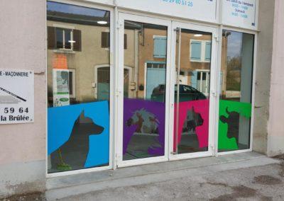 Décor de vitrine d'un cabinet vétérinaire